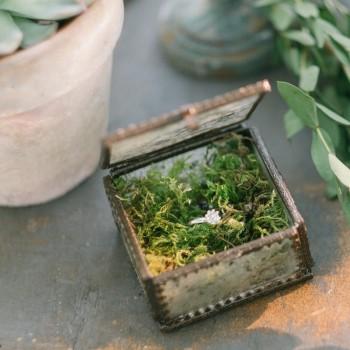 Boite porte-alliances vintage verre et métal